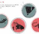 Il progetto a fumetti, breve video di presentazione di LIFE WetFlyAmphibia